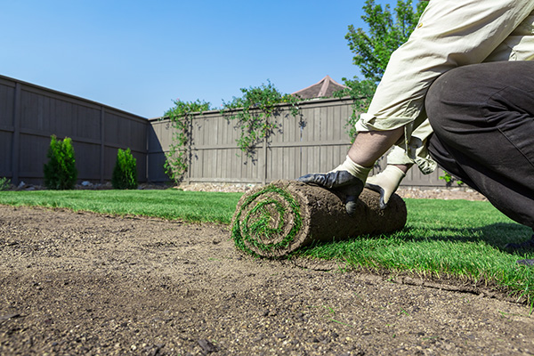 Natural Turf and Artificial Turf