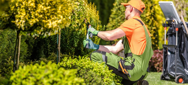 How to choose the best Landscape experts for your Garden?